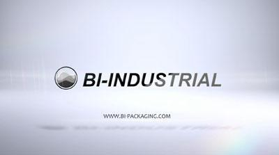 BI INDUSTRIAL COMPANY INTRODUCTION